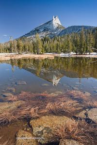 Yosemite-9466