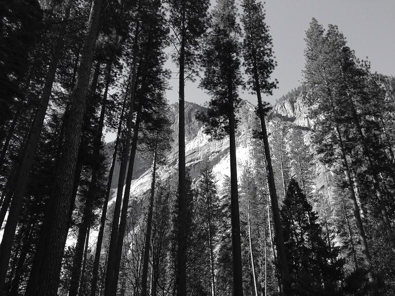 Channeling Ansel Adams at Yosemite