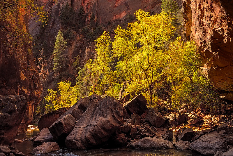 zion-narrows-8168