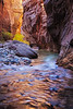 zion-narrows-8096