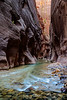 zion-narrows-8170