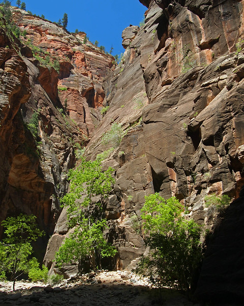 Narrows0921