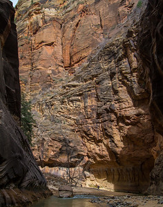 Afternoon sun lights up the canyon wall on the return trip downstream.
