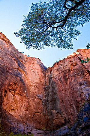 Zion National Park, Autumn