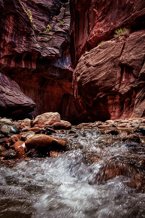 The Narrows. You can almost feel the power of water eroding the rocks when you look at the background in this image. The rock is literally carved from the flow of water downstream after thousands of years.