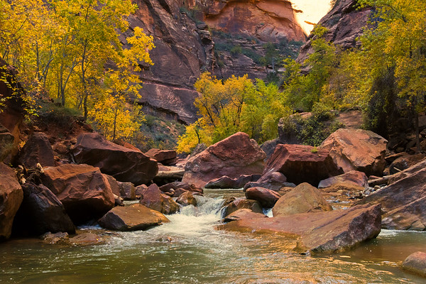 Bottom of the Narrows - Zion