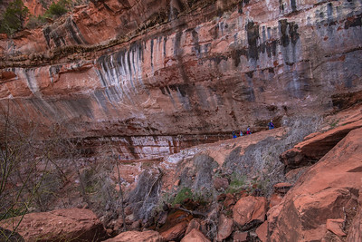 Emerald Pool Trail, at Lower Pool. Zion N. P.