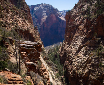A view of the Chasm that makes up refrigerator Canyon on the approach before you get to Angel's Landing Trail.