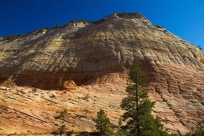 Checkerboard Mesa, a unique rock formation with criss-crossing stress lines.