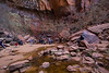 Upper Emerald Pool, Zion National Park, This is a deep, protected cove and was much cooler than the approach trail or surrounding areas.