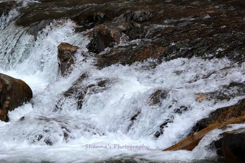 Ruff Water