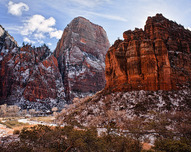 Organ & Throne  The snow covered cliffs off The Organ and The Great White Throne are illuminated by reflected light  Zion National Park, Utah, USA