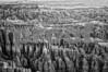 Bryce Canyon White Stripe B&W High Structure