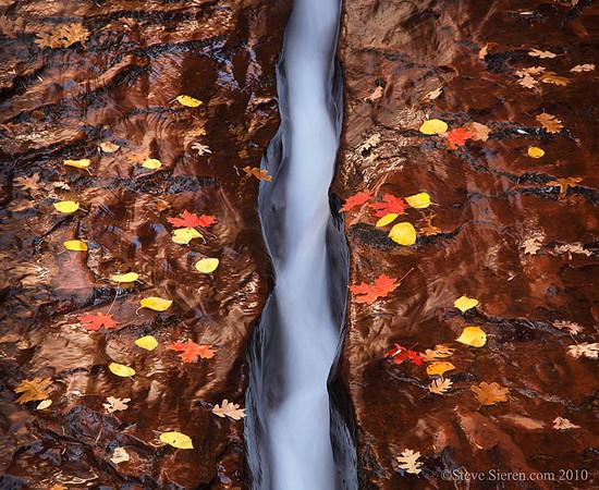 Zion Left Fork North Creek Subway crack Autumn Fall Foliage