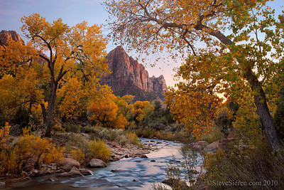 The Watchmen framed by golden cottonwoods on the Virgin River in Zion National Park, Springdale, Utah.