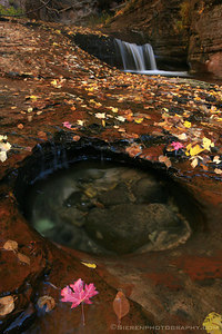 Pot Holes  Churning water chisels the rock floor, forming shallow potholes that fill to the brim with frosty water.