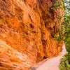 1738  G Refrigerator Canyon Trail V