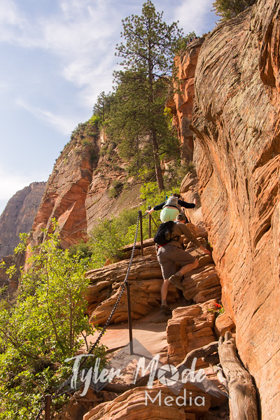 1612  G Trail Up Angels Landing