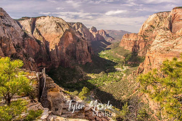 Zion and Beyond
