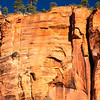 1932  G Red Rock Cliff and Pine Trees V