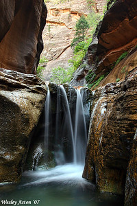 Zion Narrows 2007