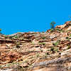 Hikers on the Angels Landing trail.  This trail has sheer precipices on either side.  Hikers steady themselves on chain links.  Click on the image to zoom in, then click on X3 at the top.