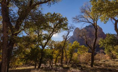The Court of the Patriarchs, Zion National Park, UT.