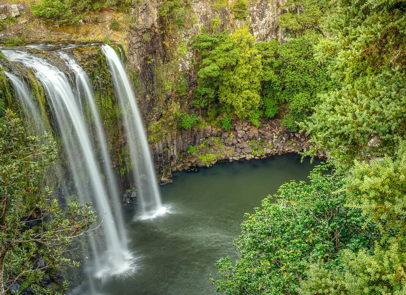 Whangarei Falls, Whangarei