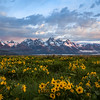 Grand Teton National Park | Wyoming