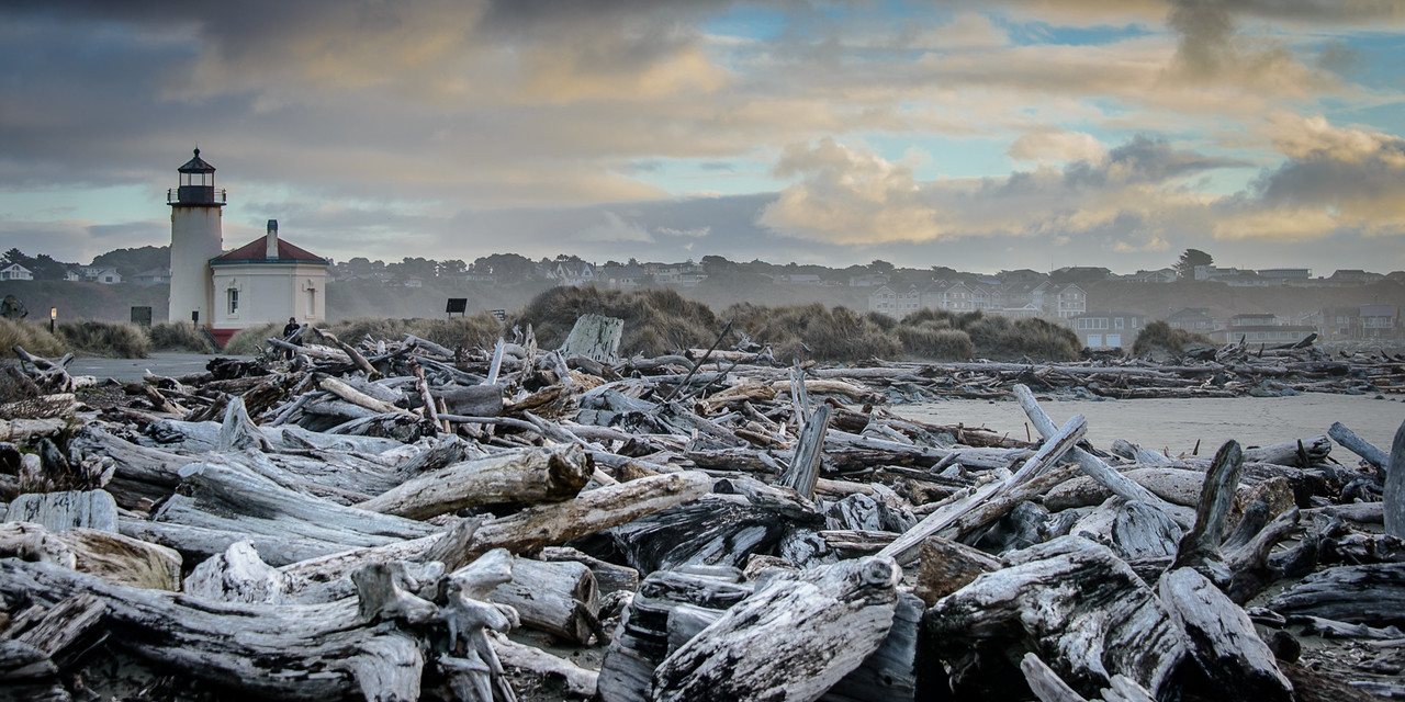 Driftwood with Coquille Lighthouse