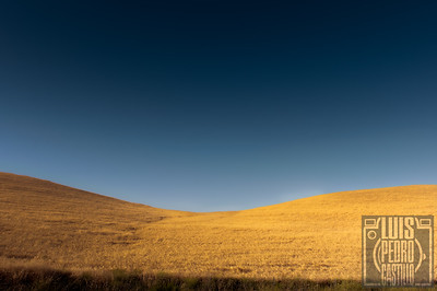 Paso Robles Hills_2