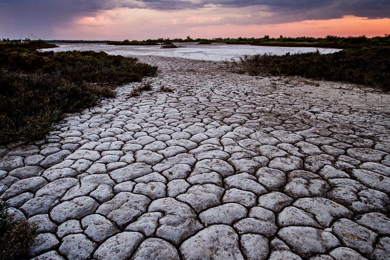 Cracked mud flats, Derby, Western Australia,