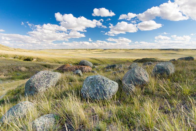 Rocky  Prairies