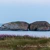 Shoreline at Bona Vista, Newfoundland