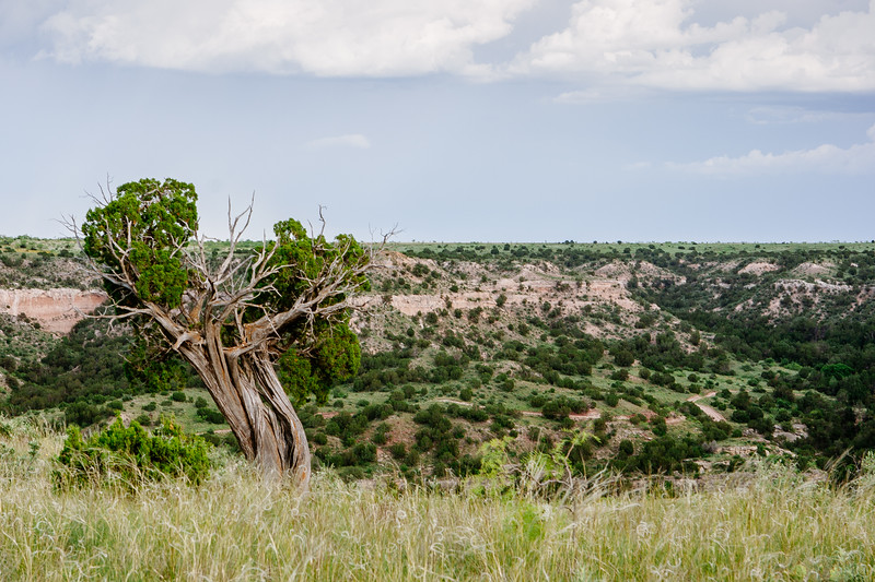 A part of the Palo Duro Canyon in the Texas Panhandle.