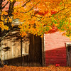 Red Barn with Fall Foliage