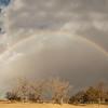 rainbow4 pano