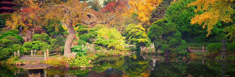 Morning at the Japanese Tea Garden in San Francisco
