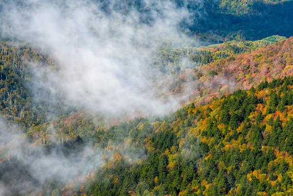 Mount Craig - Mount Mitchell State Park - NC