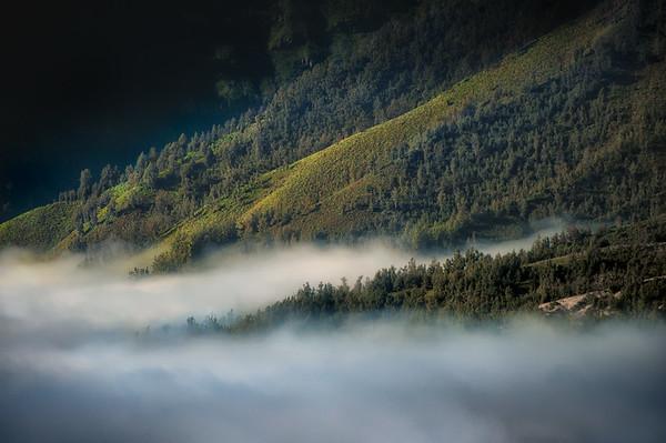 Morning Mist - Indonesia