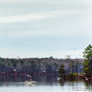 Fishing on Lake Townsend