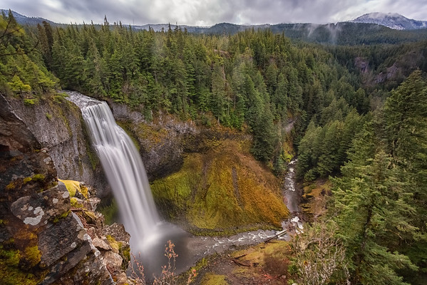 On a cold and cloudy day luck blew off the fog just enough to show a mountain peak over stunning powerful Salt Creek Falls. At 286 feet, Salt Creek is the second highest falls in Oregon.