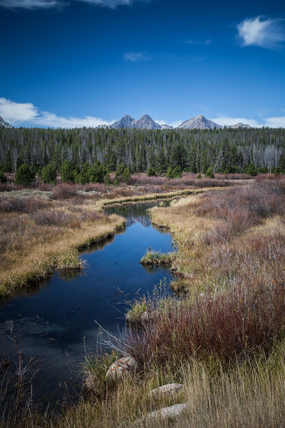 Sawtooth Mountains National Forest