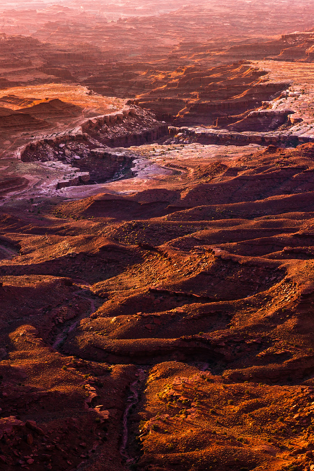 Canyonlands Morning Light