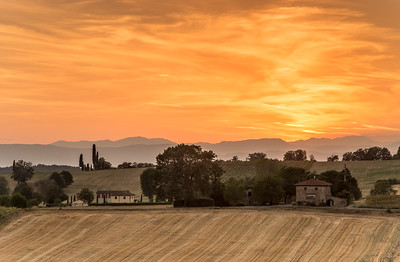Yellow Italy
