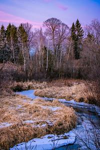 Woods& Wetlands