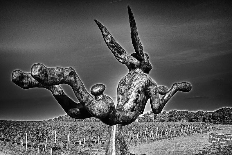 Le lapin de Smith Haut Laffite (Martillac - Gironde)