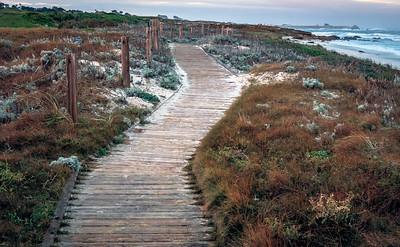 Ocean Boardwalk
