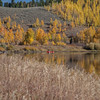 Snake River, Aspens, Teton Mountains