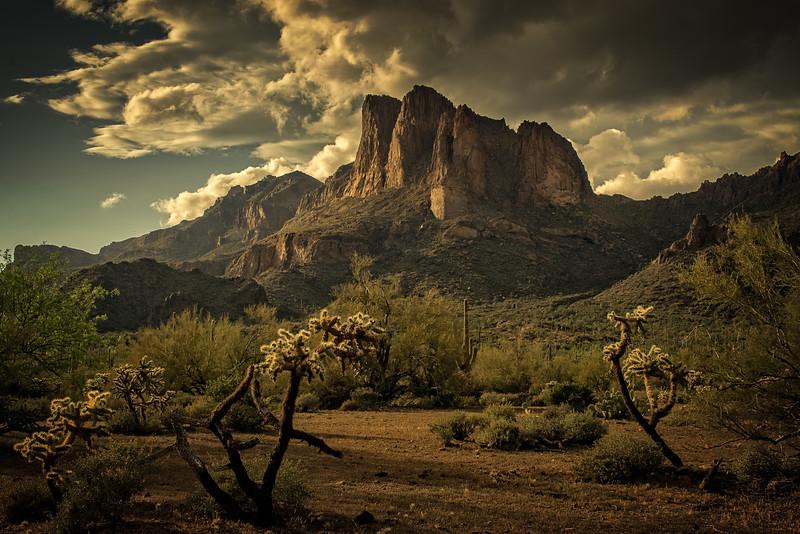 Desert Mood